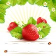 Strawberry with leafs — Vecteur #10649100