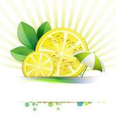 Slices of lemon — Stock Vector