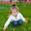 Happy beautiful girl sitting on a green meadow — Stock Photo