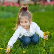 Happy beautiful girl sitting on a green meadow — Stock Photo #10194239