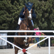 Show Jumping — Stock Photo #10098566