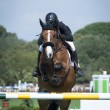 Show Jumping — Stock Photo #10098611