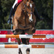 Show Jumping — Stock Photo #10098703