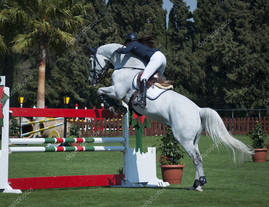 A show jumping horse and rider jumping a fence. — Stock Photo #10098653
