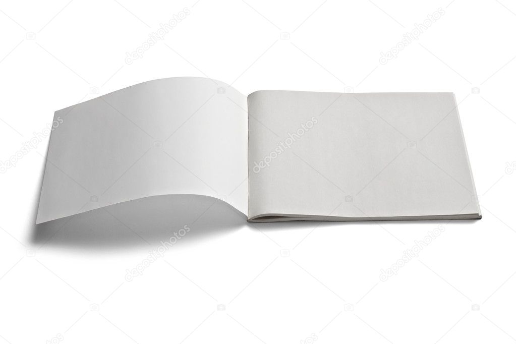 Collection of various  blank white paper on white background. each one is shot separately  Stock Photo #10262539
