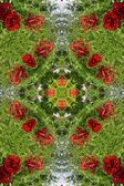 Green with red roses decoration — Stock Photo