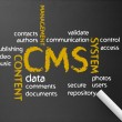 Content Management System — Stock Photo #10531872