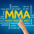Mixed Martial Arts — Stock Photo
