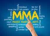 Mixed Martial Arts — Stock Photo