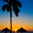 Tropical Summer Sunset — Stock Photo #8592931