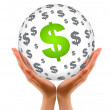 Hands holding a Dollar Sphere — Stock Photo