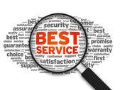 Lupa - mejor servicio — Foto de Stock