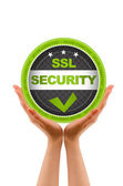 SSL Security — Stock Photo