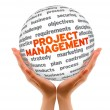 Stock Photo: Project Management