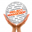 Project Management — Foto Stock #9643895
