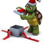 Tortoise santa character — Stock Photo