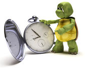 Tortoise with a classic pocket watch — Stock Photo