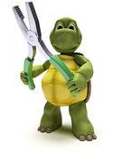 żółw z szczypce — Zdjęcie stockowe