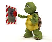 プッシュ ボタンと亀 — ストック写真
