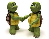 Tortoises shaking hands — Stock Photo