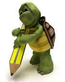 Tortoise holding a pencil — Stock Photo