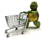 Bir alışveriş sepeti ile kaplumbağa — Stok fotoğraf