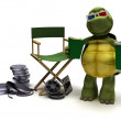 Stock Photo: Tortoise with a directors chair