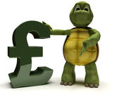 Tortoise with pound sign — Stockfoto