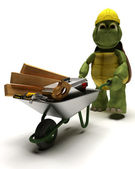 Tortoise Builder with a wheel barrow carrying tools — Stock Photo