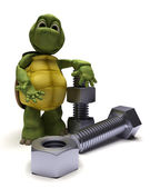 Tortoise with a nut and bolt — Stock Photo