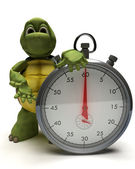 Tortoise with a traditional chrome stop watch — Stock Photo