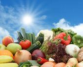 Fruta e legumes contra um céu ensolarado — Foto Stock