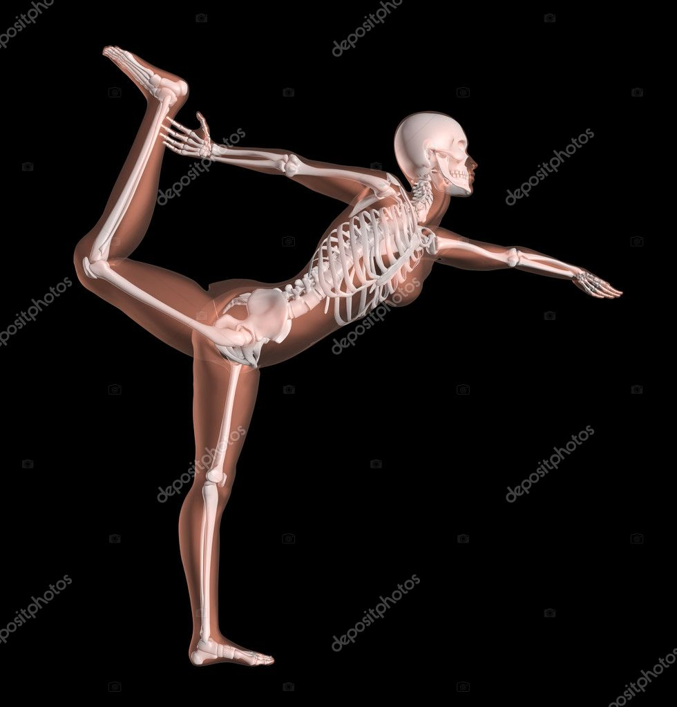 3D render of a female medical skeleton in a yoga position — Stock Photo #9310686