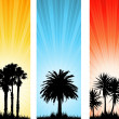 Stock Photo: Summer backgrounds