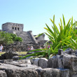 Royalty-Free Stock Photo: Tulum ruins