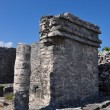 Tulum ruins — Stock Photo #10355081