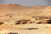 Desert near the pyramids — Stock Photo