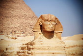 The sphinx — Stock Photo