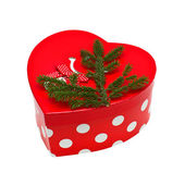 Bright box with spruce branch — Stok fotoğraf