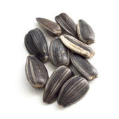 Sunflower seeds. — Stock Photo