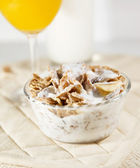Cereal bowl — Stock Photo