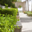 Green walkway in Dubai Marina - Foto de Stock  