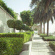 Green walkway in Dubai Marina - 