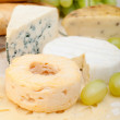 Cheese Assortment - Foto de Stock