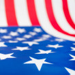 United States Flag — Stock Photo #9978088