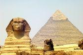Esfinge y la pirámide de giza — Foto de Stock