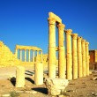 Relics of Palmyra in Syria — Stock Photo