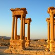 Relics of Palmyra in Syria — Stock Photo #10178051