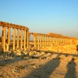 Relics of Palmyra in Syria — Stock Photo #10178068