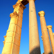 Relics of Palmyra in Syria — Stock Photo #10178132